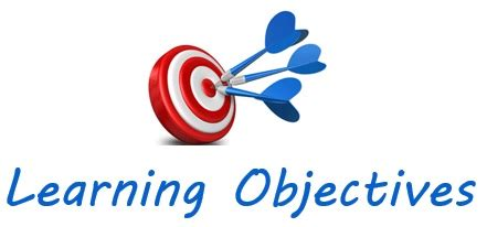 Thesis Objectives Essay Example - Bla Bla Writing